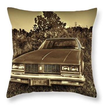 Old Car In Field Throw Pillow by Dan Friend