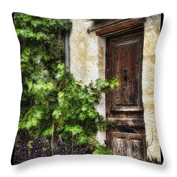 Old Door 2 Throw Pillow by Mauro Celotti