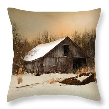 Old Homestead Barn Throw Pillow by Mary Timman