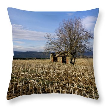 Old Hut Isolated In A Field. Auvergne. France Throw Pillow by Bernard Jaubert