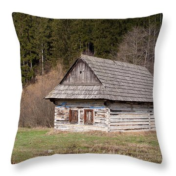 Throw Pillow featuring the photograph Old Log House by Les Palenik