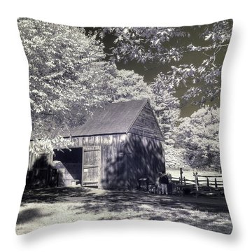 Old Mill Throw Pillow by Joann Vitali