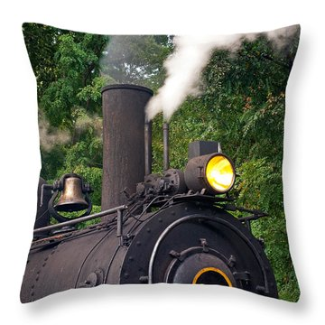 Old Number 643 Throw Pillow by Paul W Faust -  Impressions of Light