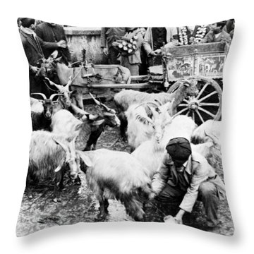 Old Palermo Sicily - Goats Being Milked At A Market Throw Pillow by International  Images