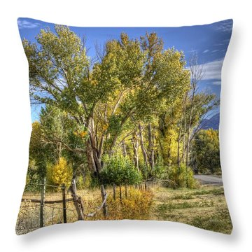Old Ranch Near Bishop Throw Pillow by Michele Cornelius