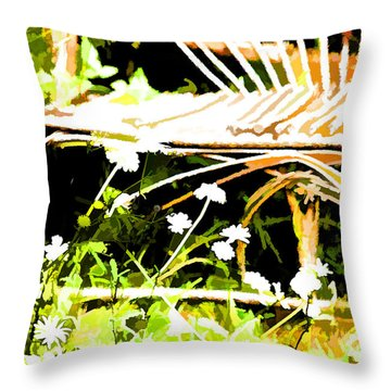 Old Rattan Chair Throw Pillow by Bonnie Bruno