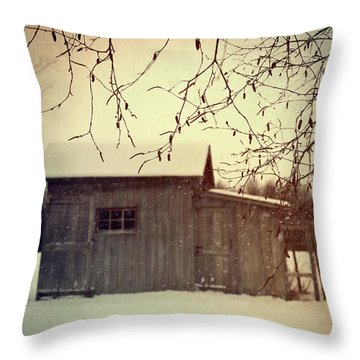 Old Shed In Wintertime Throw Pillow by Sandra Cunningham