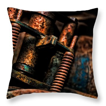 Old Springs Throw Pillow by Christopher Holmes