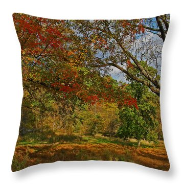 Old Tree And Foliage Throw Pillow