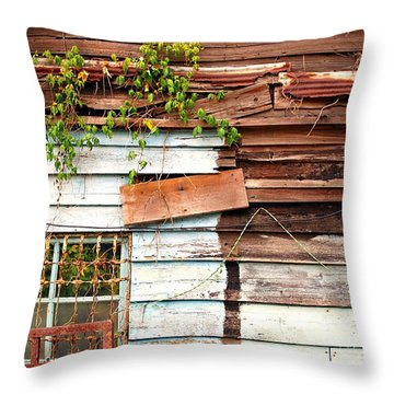 Old Wooden Shack Throw Pillow by Yali Shi