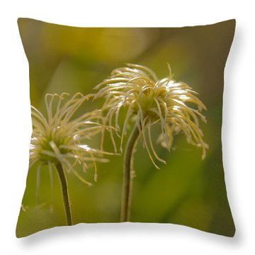 Oldness Throw Pillow