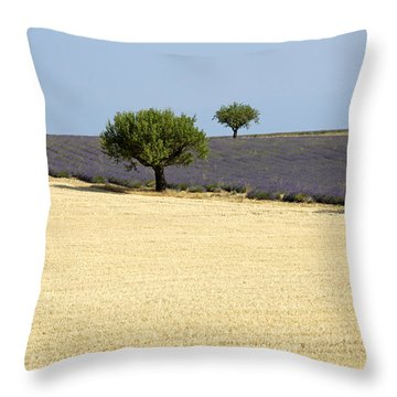 Olive Trees. Provence Throw Pillow by Bernard Jaubert