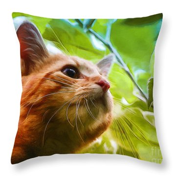 On A Discovery Tour Throw Pillow by Jutta Maria Pusl