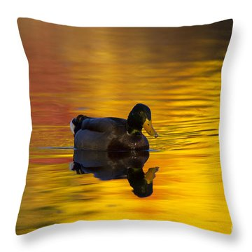 On Golden Waters Throw Pillow