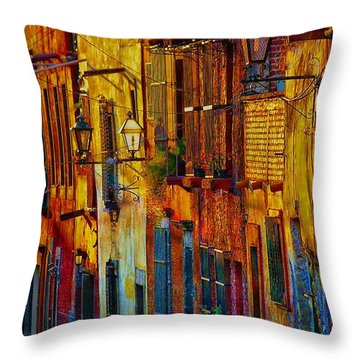 Throw Pillow featuring the photograph On The  Way Home by John  Kolenberg