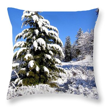 On The Bright Side Throw Pillow by Will Borden