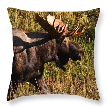 Throw Pillow featuring the photograph On The Move by Doug Lloyd