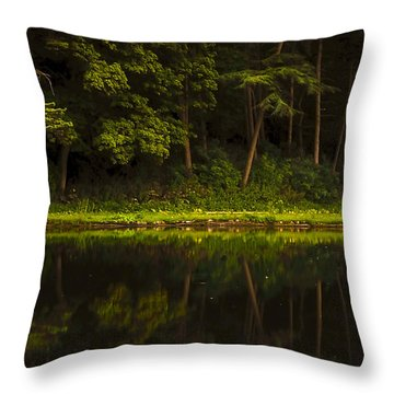 On The Other Side Throw Pillow by Svetlana Sewell