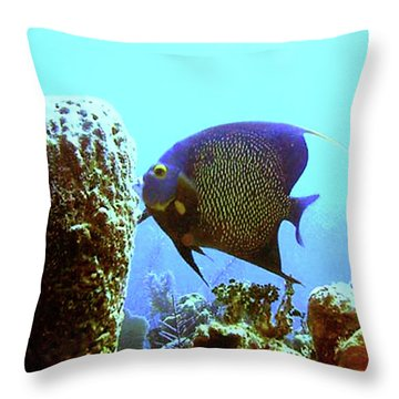On The Reef Throw Pillow by Barry Jones