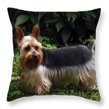 Throw Pillow featuring the photograph On The Runway by Wanda Brandon