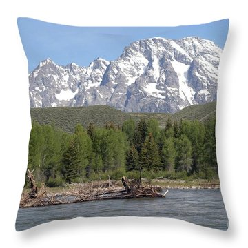 Throw Pillow featuring the photograph On The Snake River by Living Color Photography Lorraine Lynch
