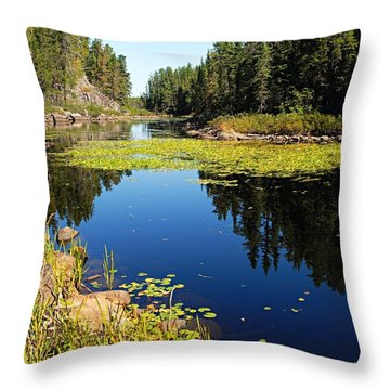 On The Way To East Lunch Lake Throw Pillow by Larry Ricker