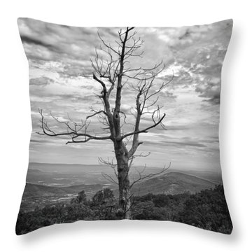 On Top Of The World Throw Pillow by Guy Whiteley