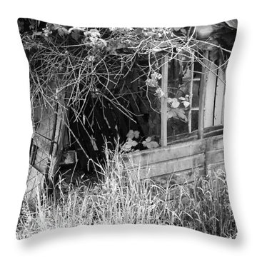 Throw Pillow featuring the photograph Once A Castle by Chriss Pagani