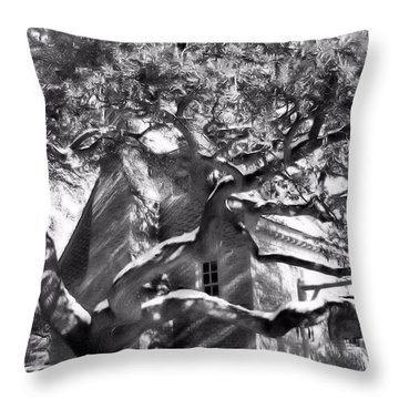 Throw Pillow featuring the photograph One Cool Old Tree by Katie Wing Vigil