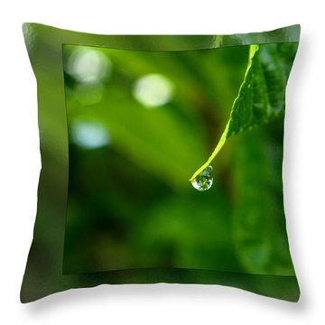 One Drop In The Bigger Picture Throw Pillow