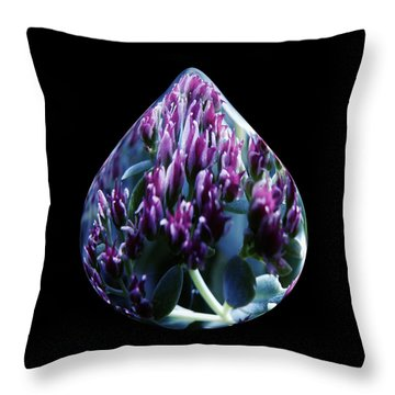 One Drop Of Water Throw Pillow by Barbara St Jean