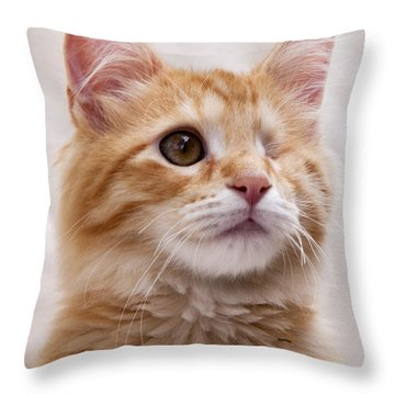 Throw Pillow featuring the photograph One Eye Willie 2 by John Crothers