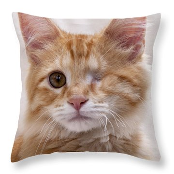 Throw Pillow featuring the photograph One Eye Willie by John Crothers
