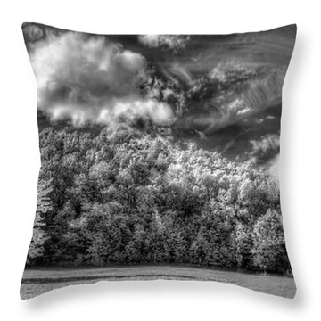 One In A Million Throw Pillow by Nick  Shirghio