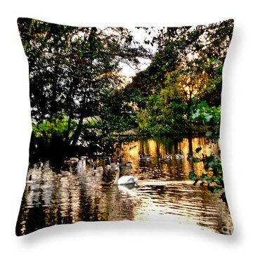 Throw Pillow featuring the photograph One Late Evening by Katy Mei