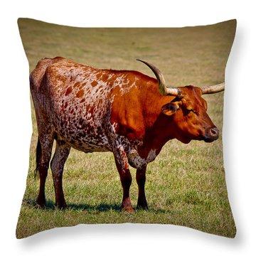 One Lone Longhorn Throw Pillow by Doug Long