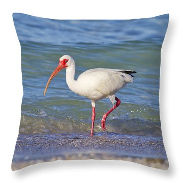 Ibis Throw Pillows