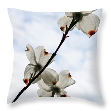 Throw Pillow featuring the photograph Only Once A Year by Barbara McMahon
