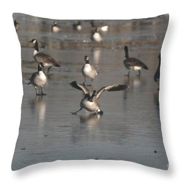 Throw Pillow featuring the photograph Oops That's Ice by Mark McReynolds