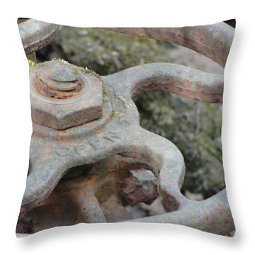 Throw Pillow featuring the photograph Open Or Close by Tiffany Erdman