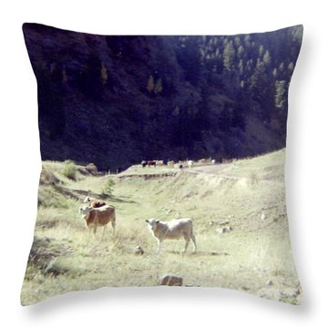 Throw Pillow featuring the photograph Open Range by Bonfire Photography