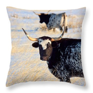 Throw Pillow featuring the photograph Open Range by Jim Garrison