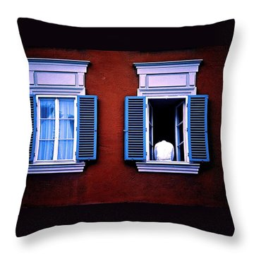 Open Window Throw Pillow