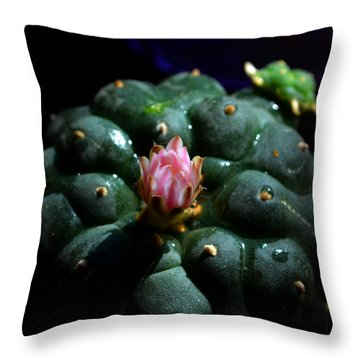 Opening Peyote Flower Throw Pillow by Susanne Still
