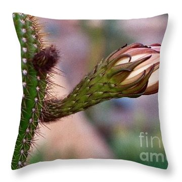 Throw Pillow featuring the photograph Openopenopen by Kathy Bassett