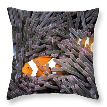 Orange Clownfish In An Anemone Throw Pillow by Greg Dimijian