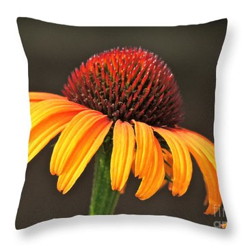 Throw Pillow featuring the photograph Orange Crown by Eve Spring