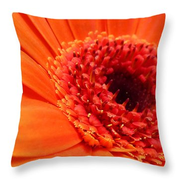 Orange Gerbera Close Up Throw Pillow