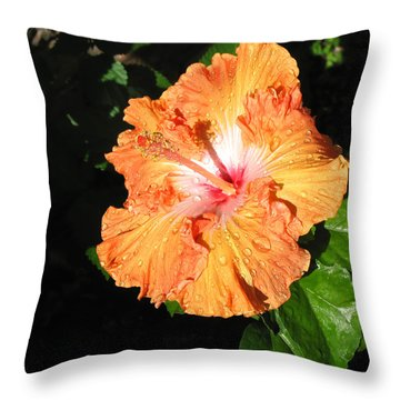 Orange Hibiscus After The Rain 1 Throw Pillow by Connie Fox