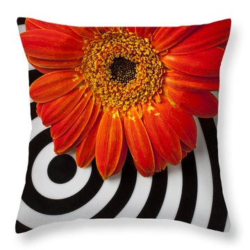 Orange Mum With Circles Throw Pillow by Garry Gay
